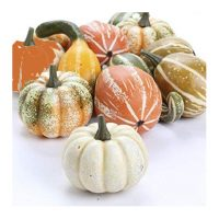 Gourd Pumpkin Assortment Fall Decoration