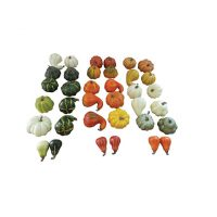 12 Count Mesh Bag Gourd Pumpkin Assortment