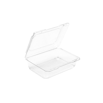 Clear Plastic Hinged Container Box