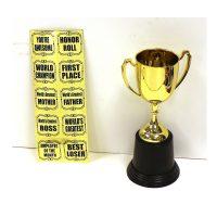 8 1/2 Inch Plastic Award Trophy w Stickers