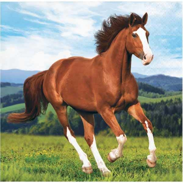 Horse and Pony Paperware Beverage napkin