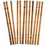 Party Luau Bamboo Print Straws