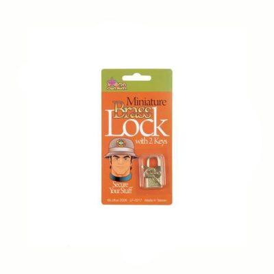Novelty Miniature Brass Lock w Keys