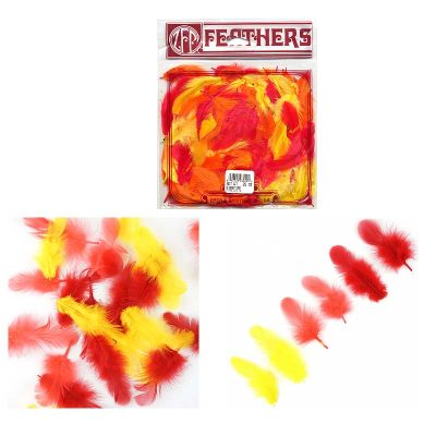 Rooster Feather Plumage Fire Color