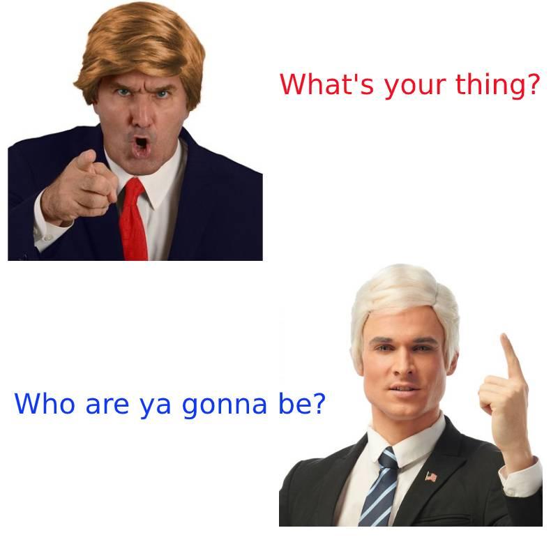 Buy your Trump or Biden wig for Halloween now!