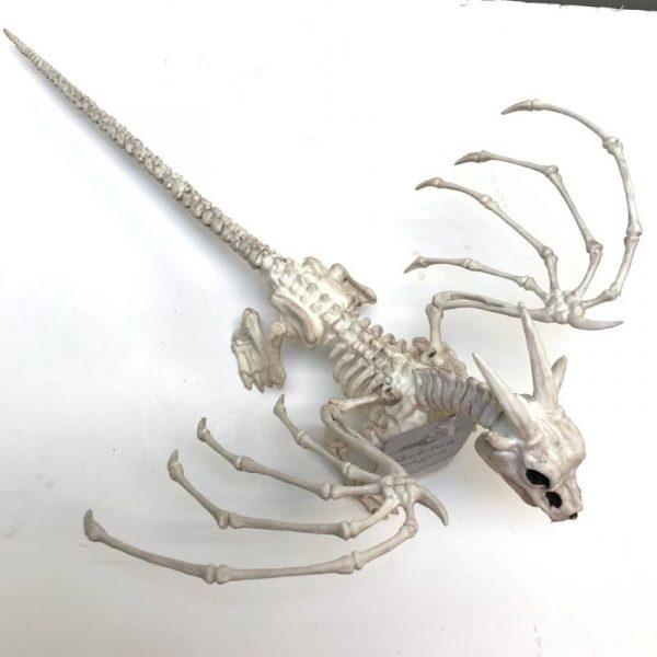 "15"" Plastic Skeleton Dragon"